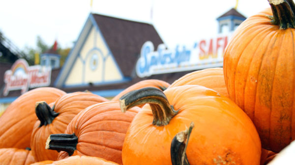 October Fun and Fall Festivals