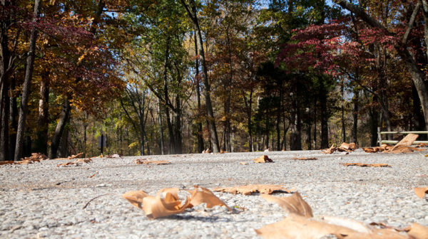5 Ways to get in the Fall Mood Feature Photo at Lincoln Boyhood National Memorial