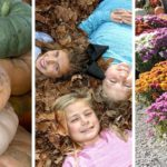 Three side-by-side photos feature multiple stacks of pumpkins, three girls lying on the ground in fall leaves, and multiple pots of colorful mums